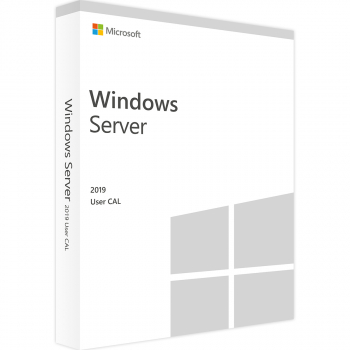 Windows Server CAL 2019 Polish 1pk DSP OEI 5 Clt User CAL