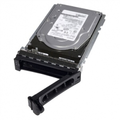 Dysk serwerowy DELL 1TB 7.2K RPM SATA 6Gbps 512n 3.5in Hot plug 14gen.
