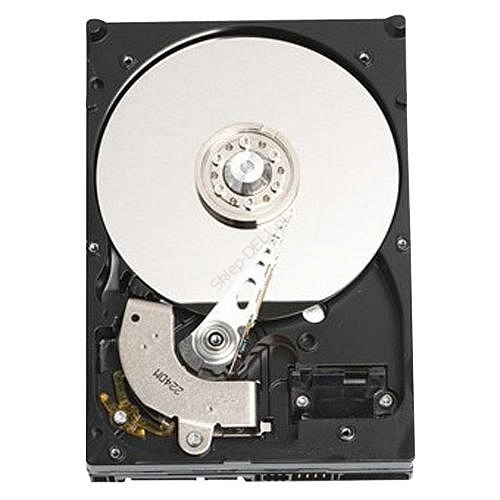 Dysk serwerowy Dell 2TB SATA 7.2K RPM 3.5'' HD Cabled - Kit (PowerEdge T20, T110II)
